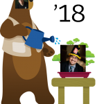 Salesforce Spring 18 WizardCast