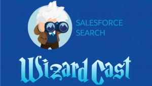 Announcing Einstein Search